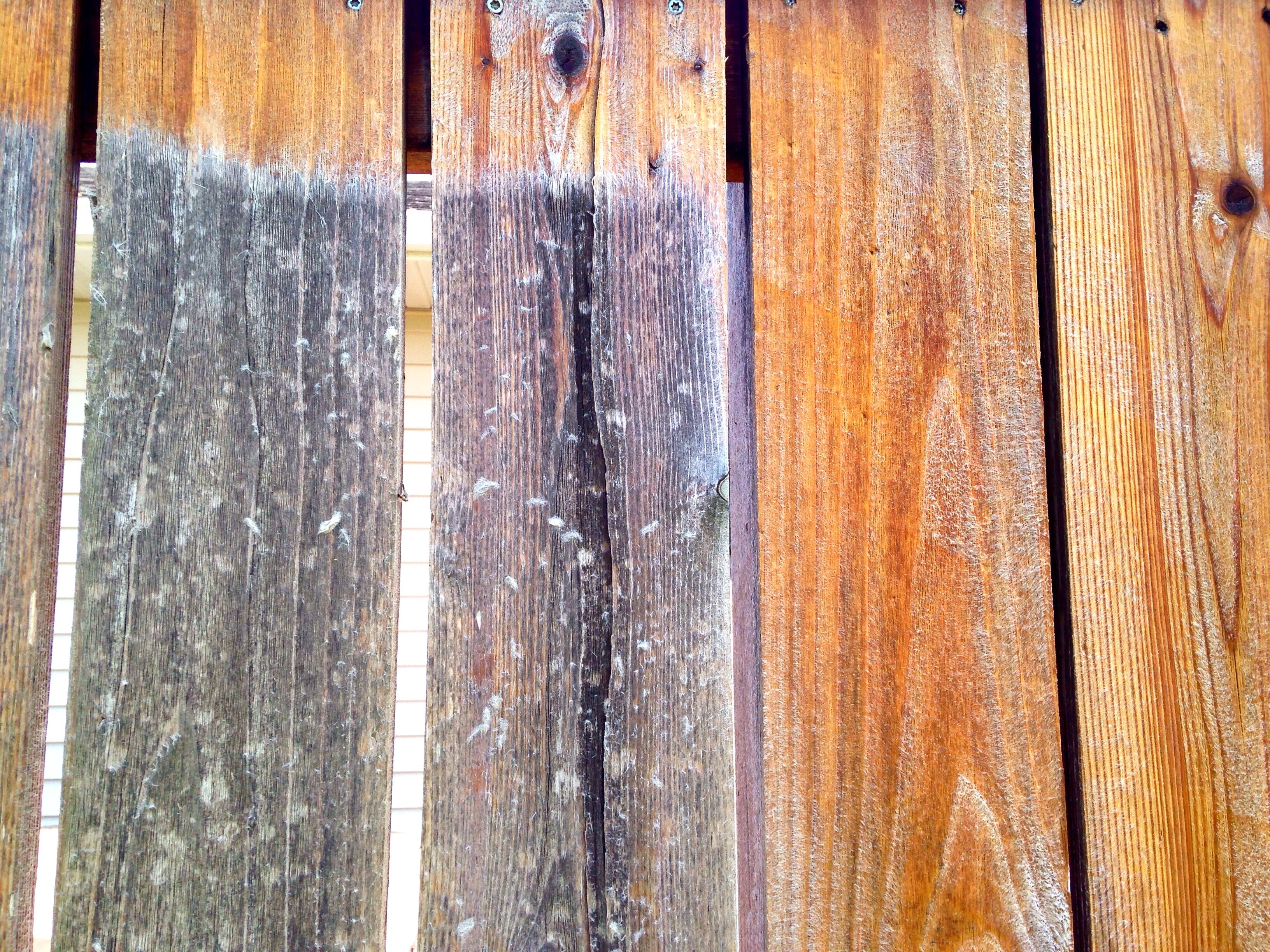 Holz Fechten