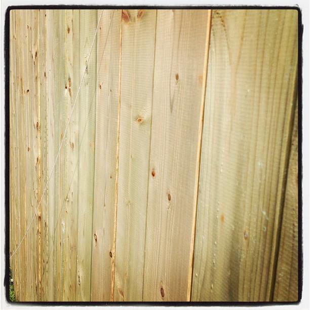 Nizza Holz Fechten Fotos