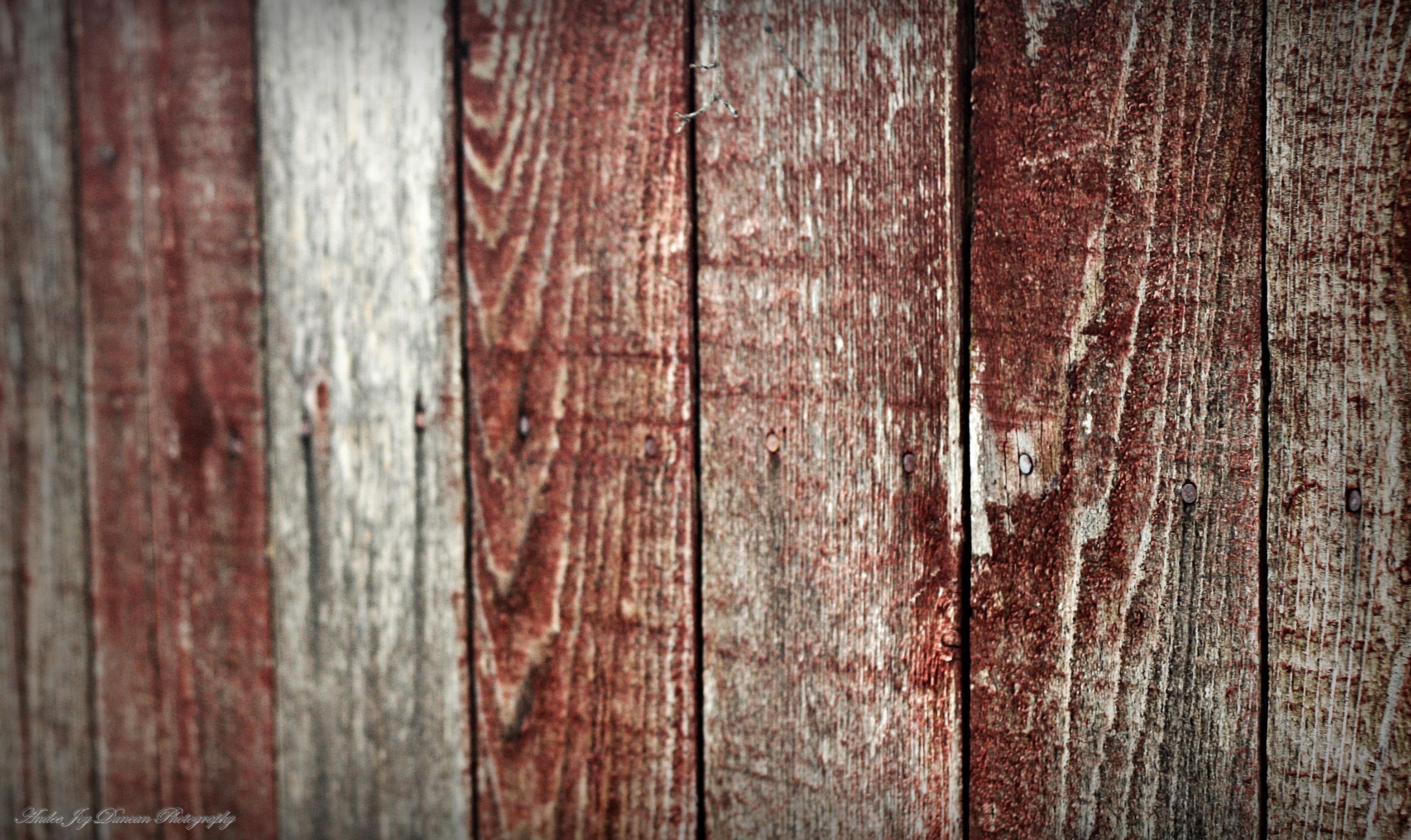 Coole Holz Fechten Bilder